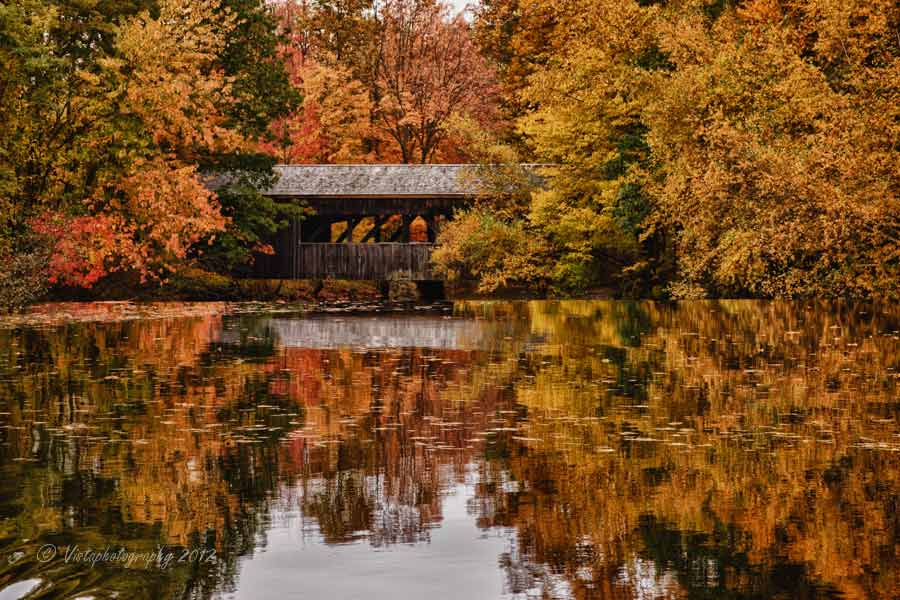New England Fall Foliage Desktop Wallpaper Fall Gallery Massachusetts New England Fall Foliage