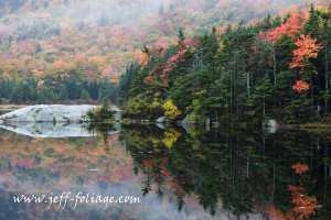 beaver pond on Lost River Rd., New Hampshire on 30 September 2008