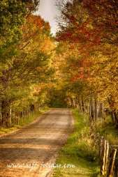 A farmers back road in peacham Vermont during New England fall foliage.