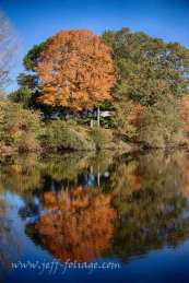 Autumn colors in Rhode Island and New England fall foliage