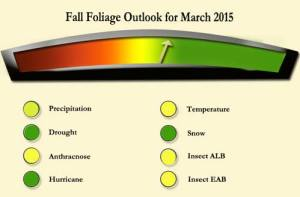 My outlook as of March 2015 for fall foliage and my foliage forecast for 2015