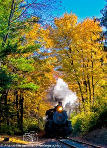 train through fall colors