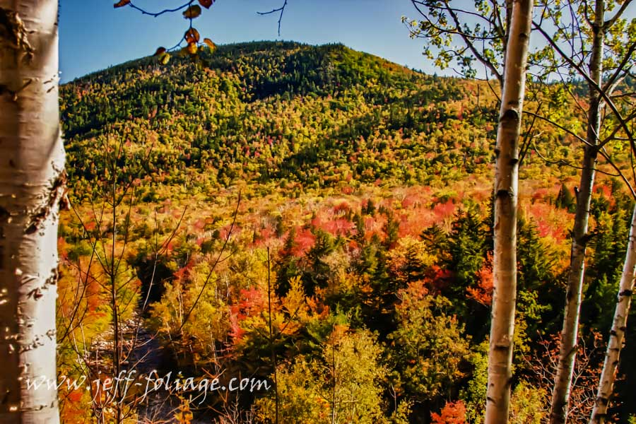 Beautiful fall foliage colors over Jackson NH from Pinkham Notch road.