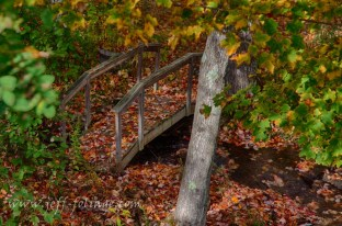 Footbridge in autumn by Jeff Folger. This small leaf covered footbridge sits below a small pond. the pond probably used to power a mill years back as it now turns a long paddle wheel that is under the ledge of the pond. So as water flows over the edge of the pond it generates power in Tamworth New Hampshire.