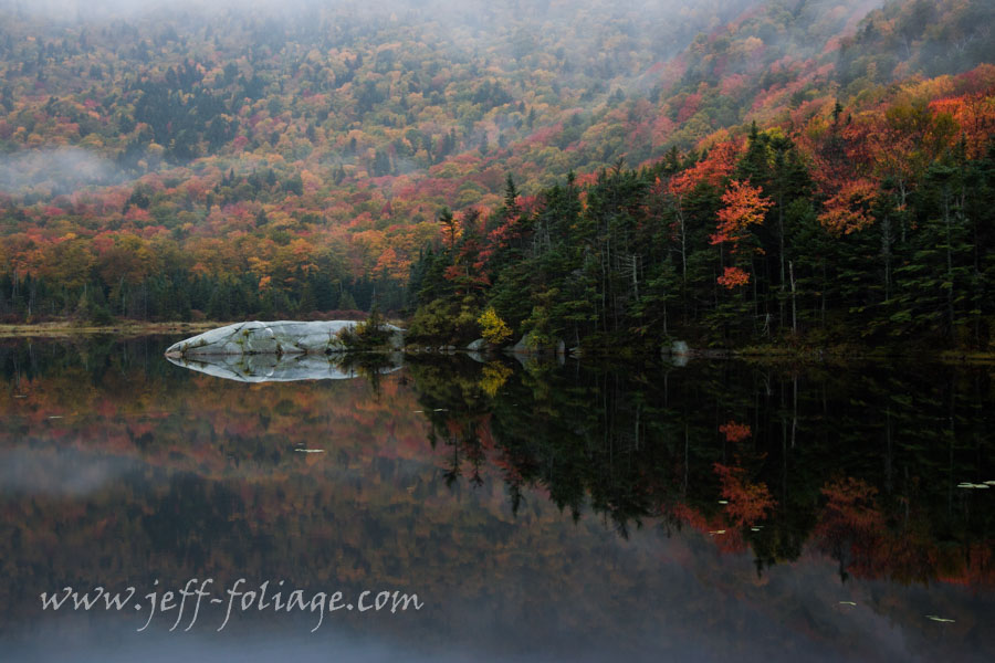 Still mirror like fall foliage reflection