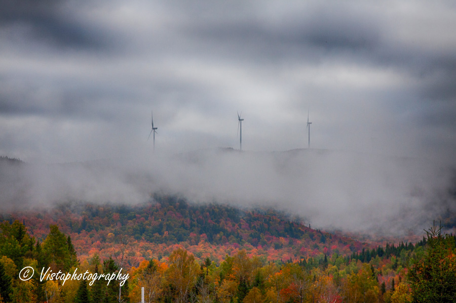 New England Photography of the fall foliage in NH