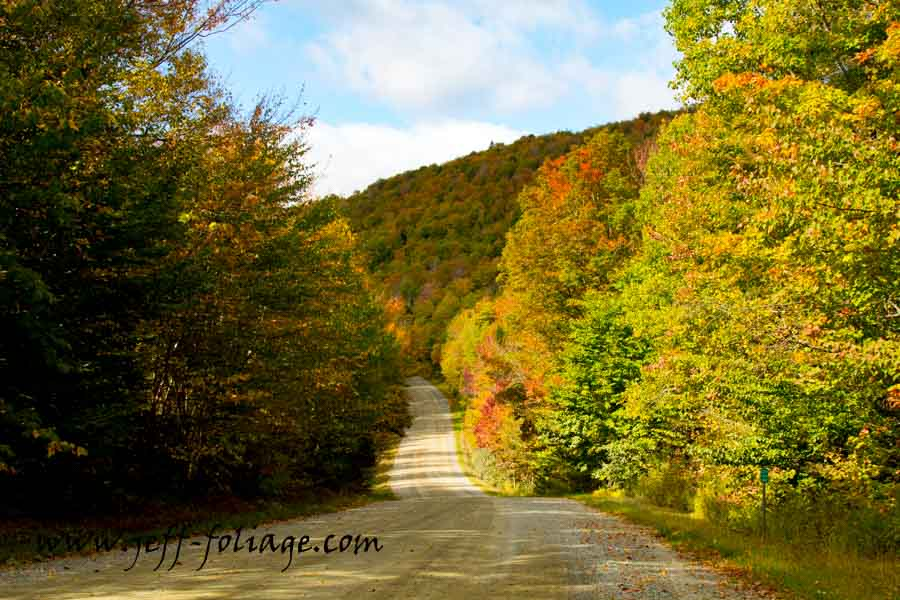 New England photography of Early fall color arriving along Granby road in Guildhall Vermont