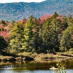 Kancamagus in early fall at the Lilly Pond