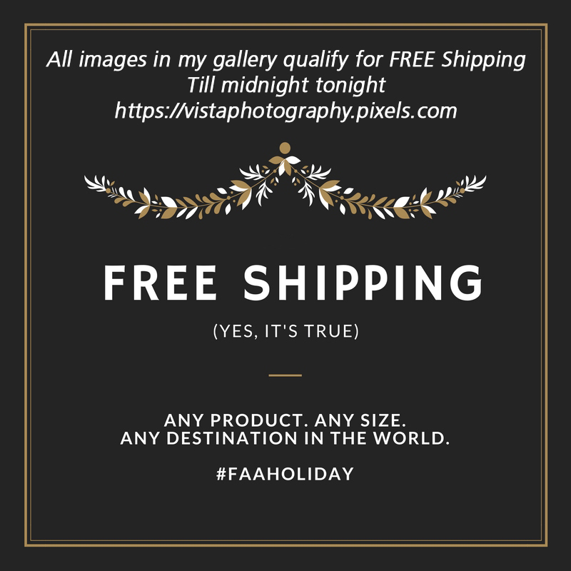 Free Shipping worldwide one day only