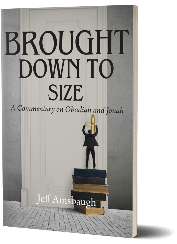Brought Down To Size: A Commentary on Obadiah and Jonah