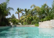 Tropical Landscape Styles - Jeff Lee Landscaping Las