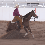 horse property realtor scottsdale