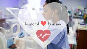 Neonatal nurse salary