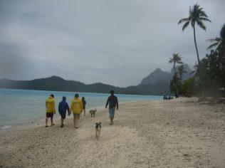 more-dog-island-3_213870982_o
