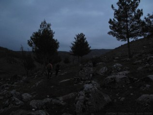 Our dusk tour of the Hittite rock garden in Yesemek