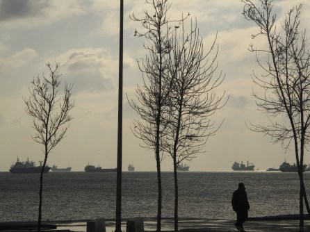 Freighter ships on the Bosphorus