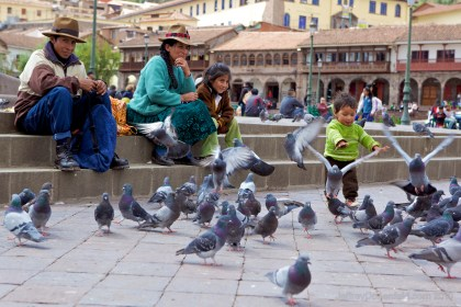 birds-in-plaza-de-armas_5000496806_o