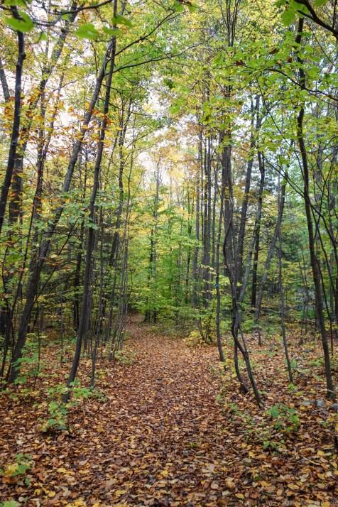 2012-10-06-climbing-at-the-gunks---dsc07375-edit_8065704596_o