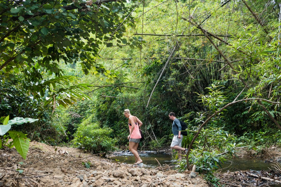 Hiking through the jungle to a less than inspiring waterfall - we still had a great hike!