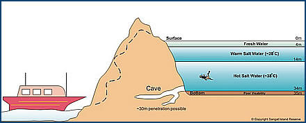 Barracuda Lake Diagram, from AsiaDiveSite.com