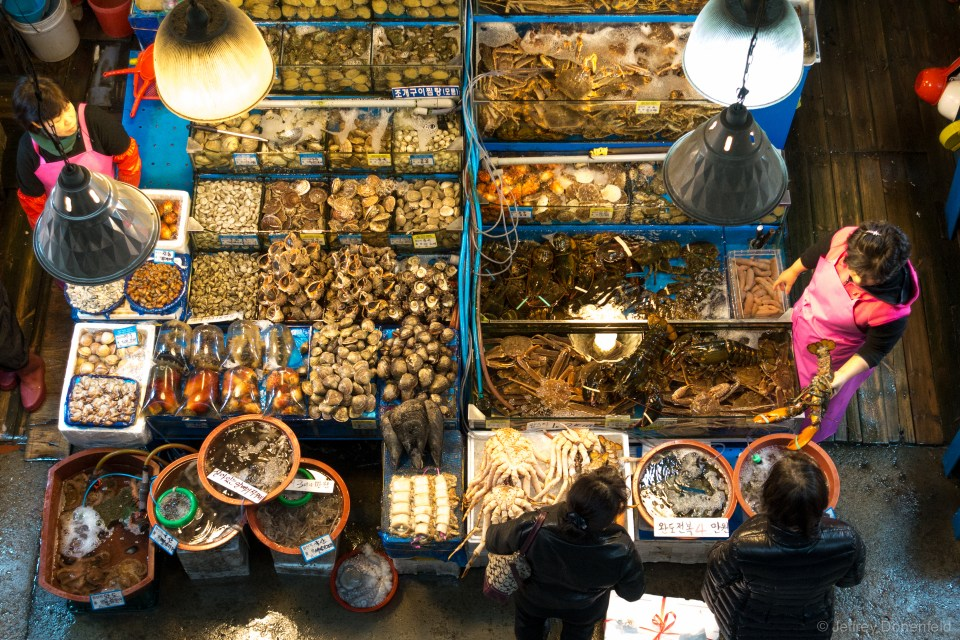 Each vendor has their own bit of space in the market, and packs it full of both fresh, frozen, and dried fish. Some vendors even have large tanks of live fish.