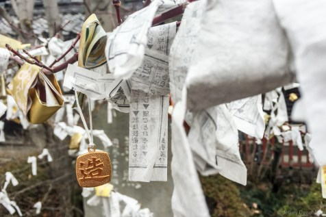 Coins and papers tied to a tree for luck at the Zenkoji Temple, Nagano, Japan