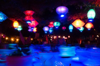 We didn't ride the teacups, but they were quite neat to watch at night.