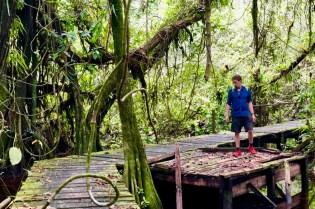 Jeffrey Donenfeld Exploring Panama - 40