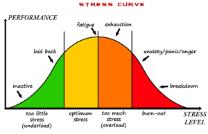 stress-performance curve for your stress management plan