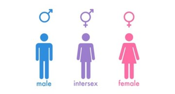 intersex graphic