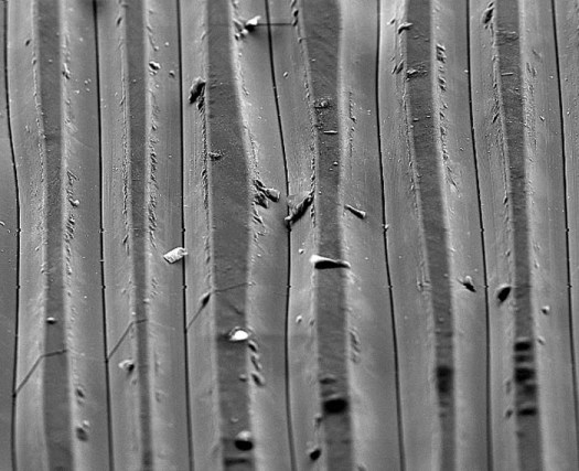 Electron Microscope Images Of Vinyl Record Grooves Jeff