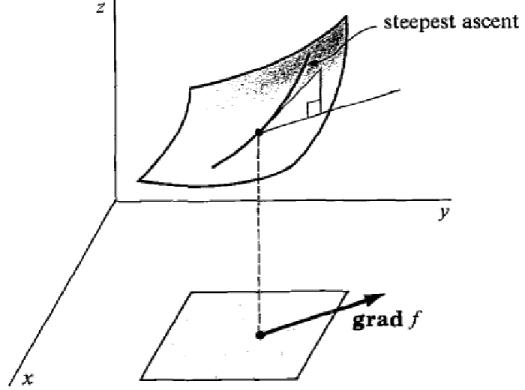 GradientVector-web