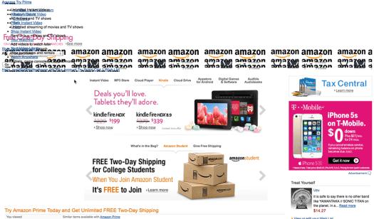 AmazonWebsiteGlitch-web
