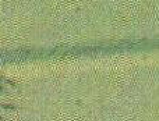 WeirdCompressionFromScan_02