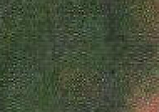 WeirdCompressionFromScan_03