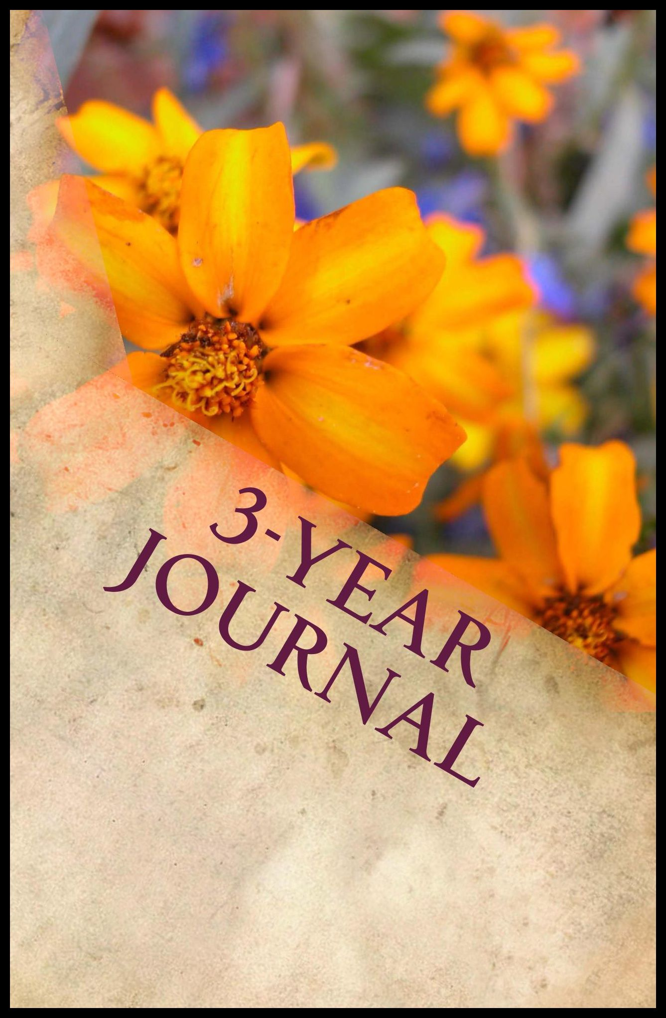 3-Year Journal