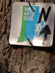 Photo of North-South Trail marker