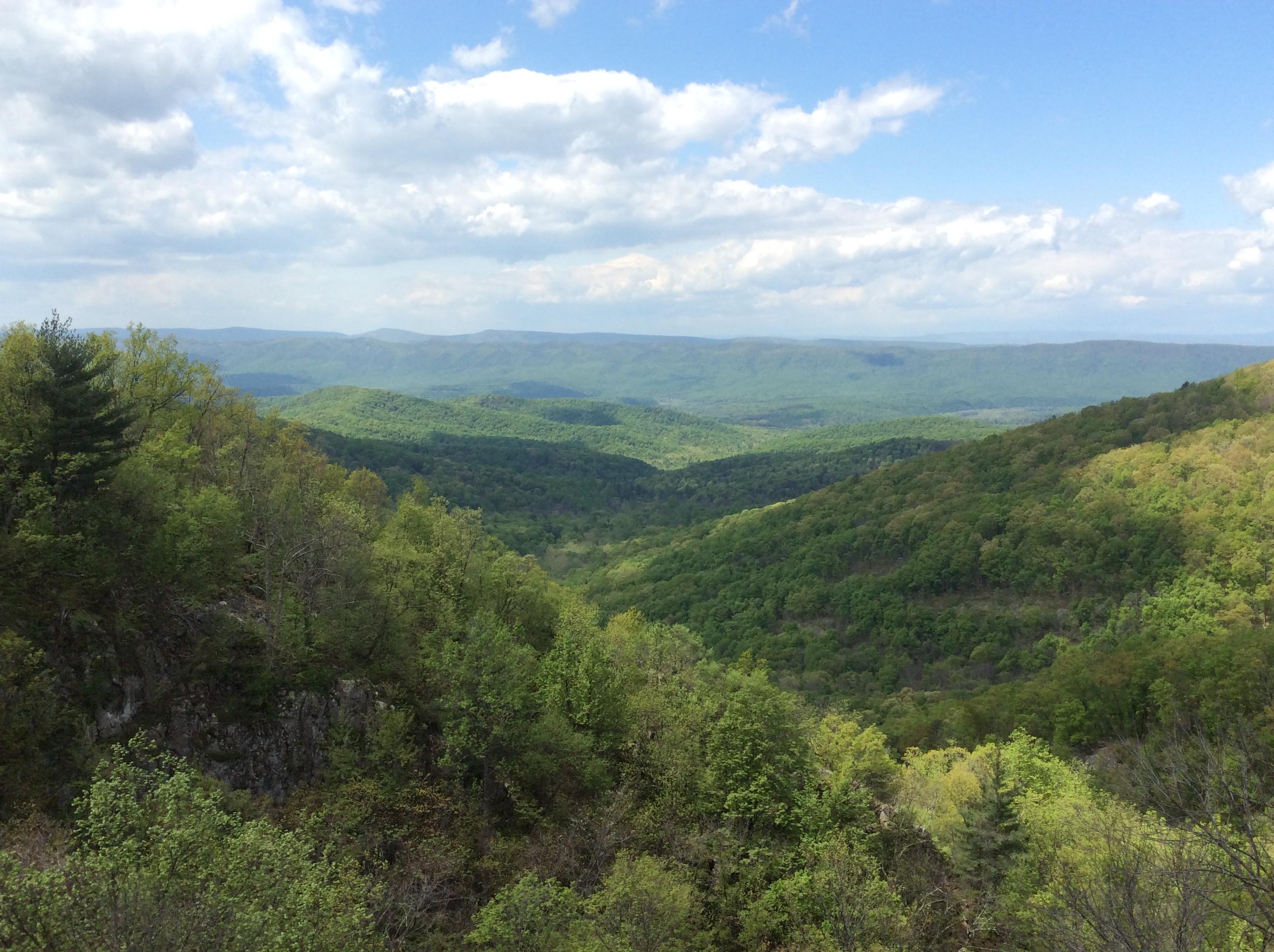 Photo from Tuscarora Trail. ©2019 www.JeffRyanAuthor.com