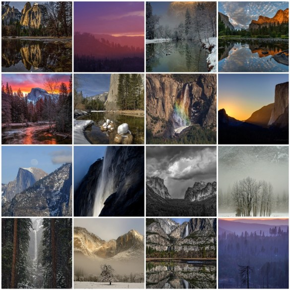 Winter photography workshop in Yosemite National Park