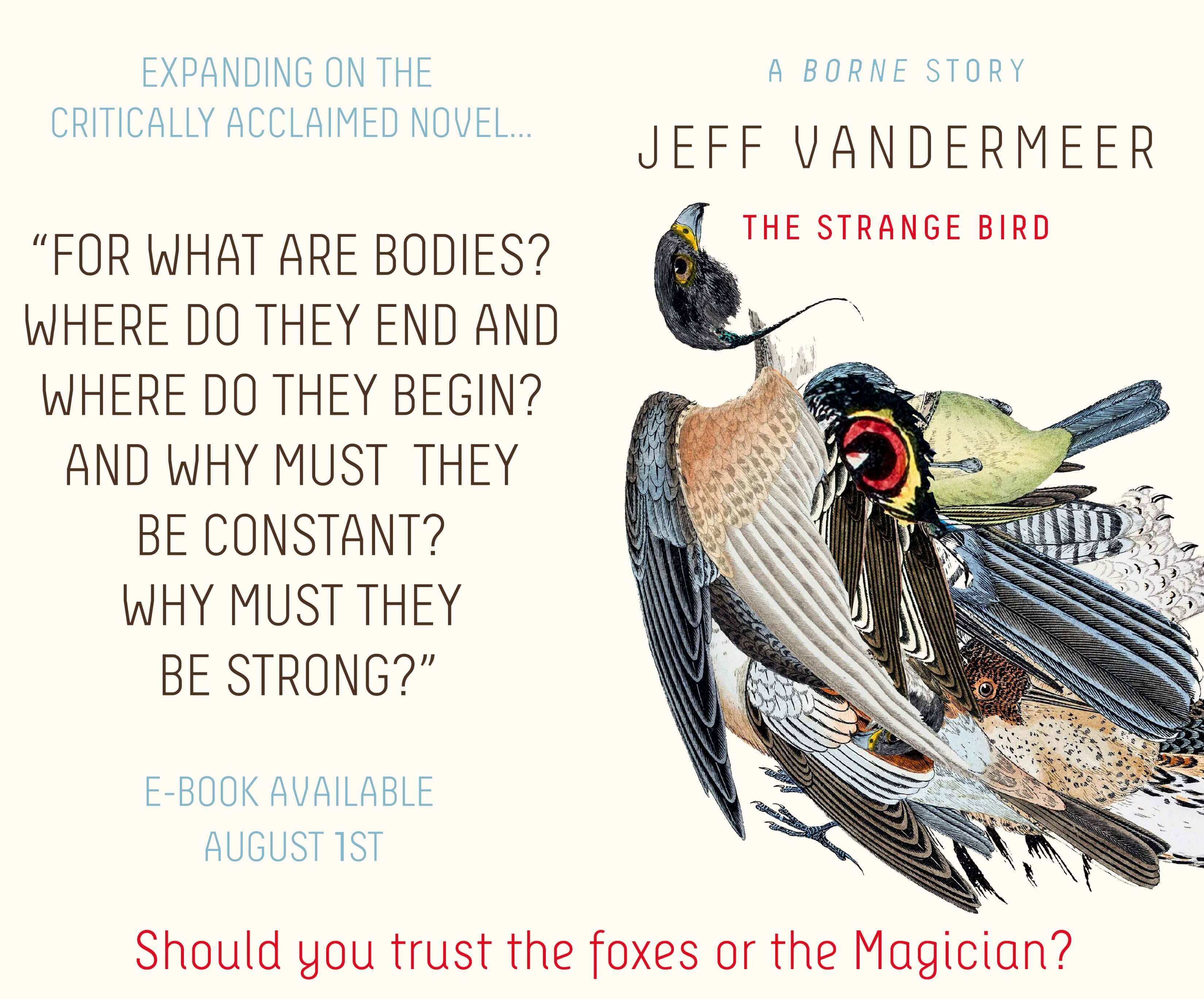 Borne central jeff vandermeer the strange bird isingenious provocative and deeply moving depauls environmental critique blog fandeluxe Image collections