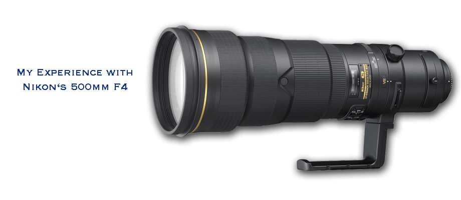 Nikon 500mm F4 My Experience