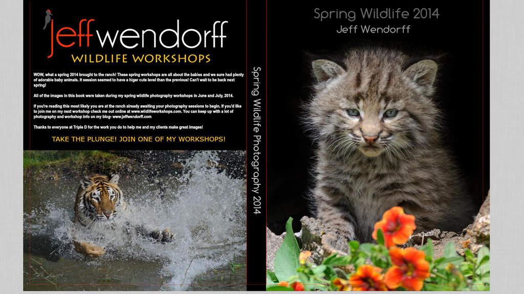 Wildlife Photo Books with Artisan State