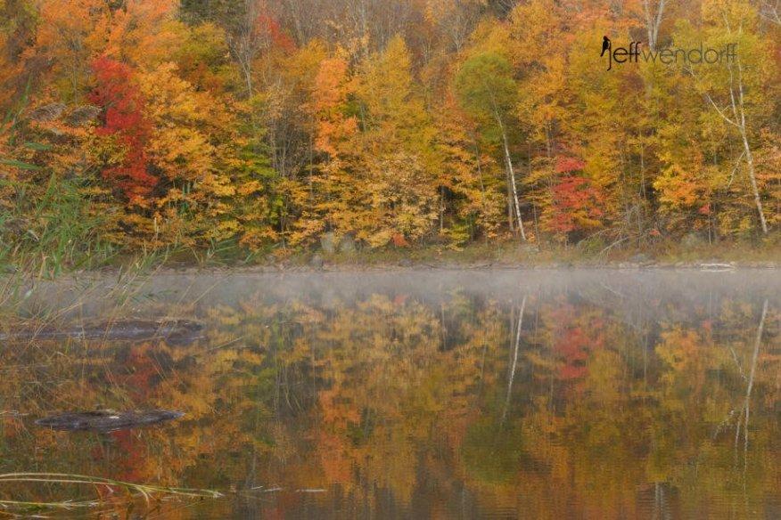 Fall foliage - Chittendon Reservoir photographed by Jeff Wendorff