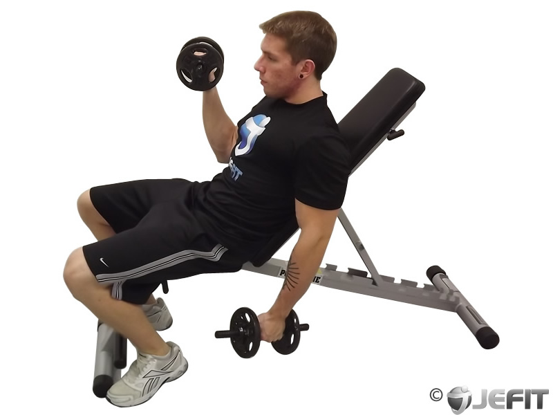 Dumbbell Alternate Incline Curl Exercise Database
