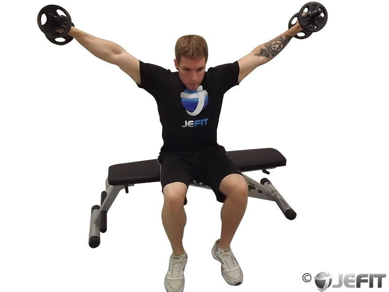 Dumbbell Seated Side Lateral Raise - Exercise Database ...