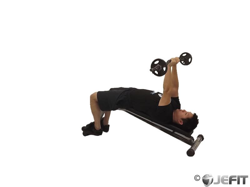 EZ Bar Decline Close Grip Skull Crusher  Exercise
