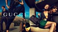 Gucci+3