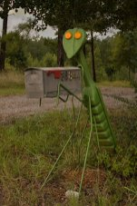 insect_mailbox