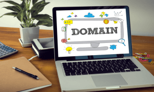 Domain Marketing