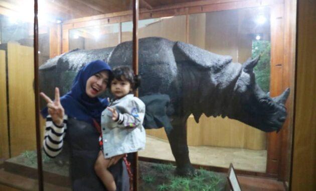 Seiring berkembangannya zaman, objek cabang ilmu biologi dibagi dan dikhususkan pada objek tertentu. 10 Gambar Museum Zoologi Bogor, Harga Tiket Masuk, Sejarah